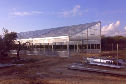 Hortisolar, progetto sul fotovoltaico per serre