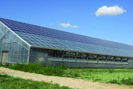 La serra fotovoltaica che sfrutta il 90% della luce solare