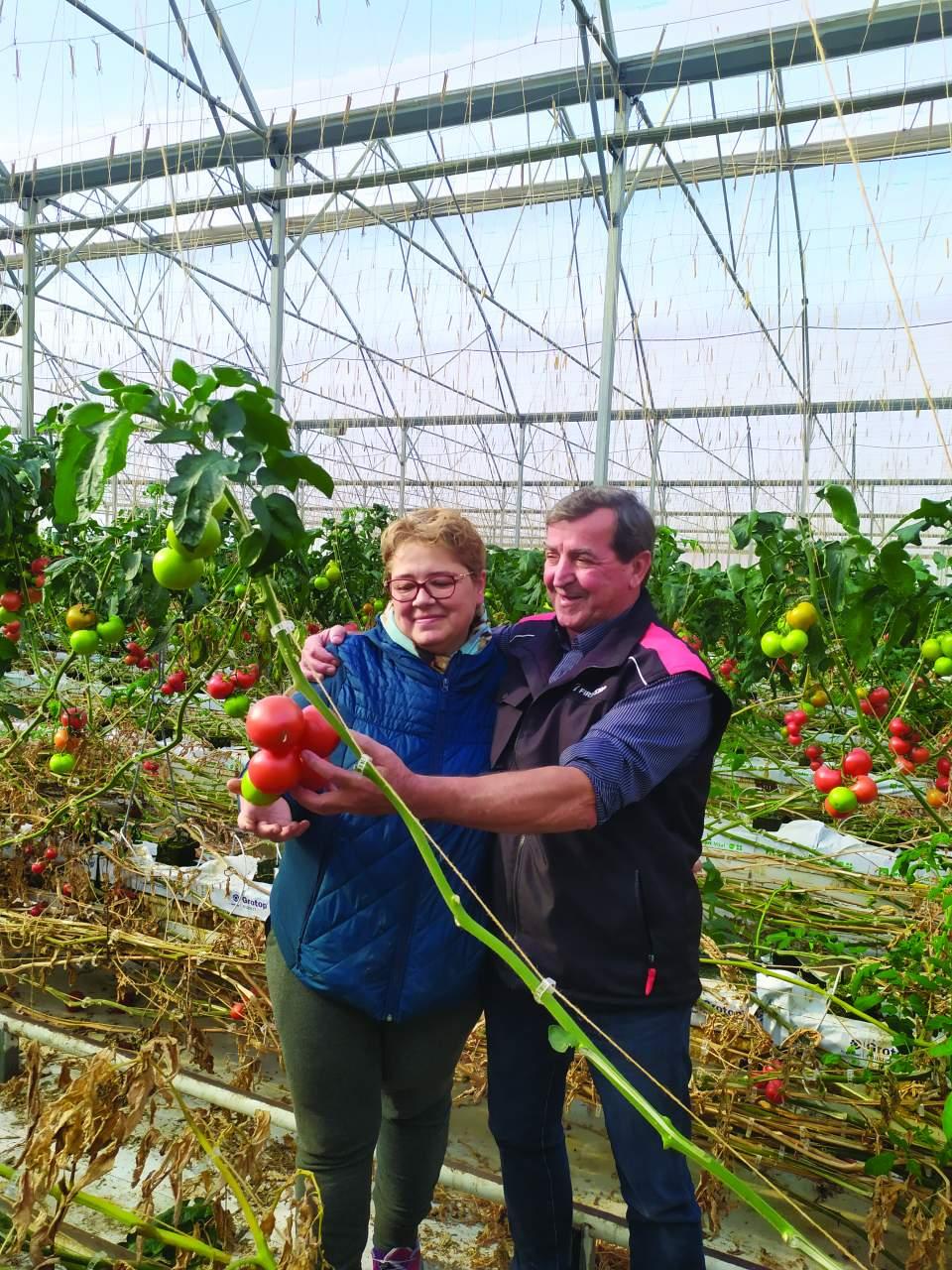 pomodori hi-tech