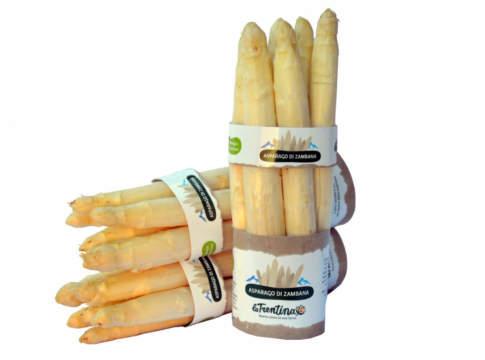 asparago di Zambana