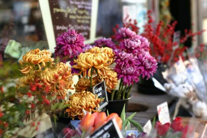 Incontro nazionale floricoltori