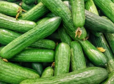anguria zucchine