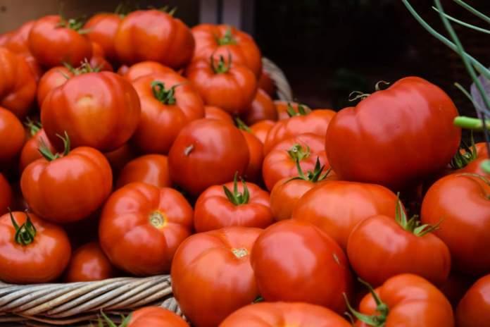 prezzi ingrosso pomodori