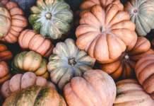 prezzi di pomodori e zucche