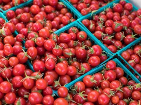 prezzi all'ingrosso dei pomodori