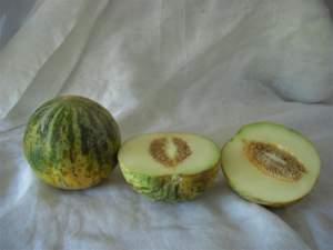Melone banana