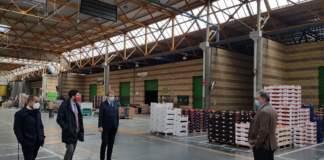 Mercato ortofrutticolo Cesena lavori