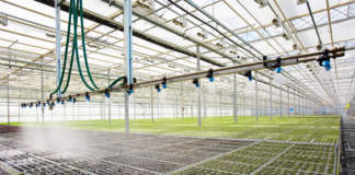 irrigazione sostenibile