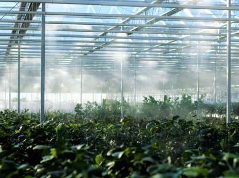 irrigazione Po di Tramontana