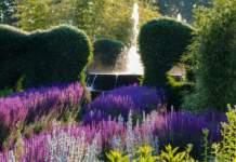 giardini venaria